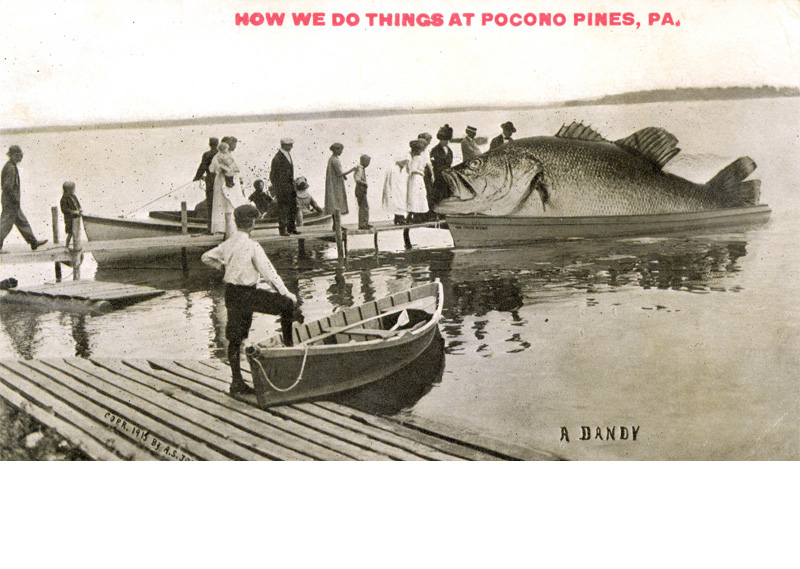 Spring fishing on Lake Naomi ... Proof positive that fishing in our community is the best in the country. This whimsical postcard, entitled 'A Dandy,' was created by A.S. Johnson Jr., copyright 1915.